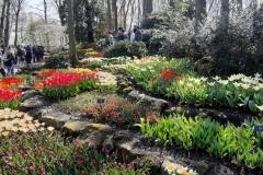 Park tulipanov