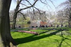 park Amsterdam