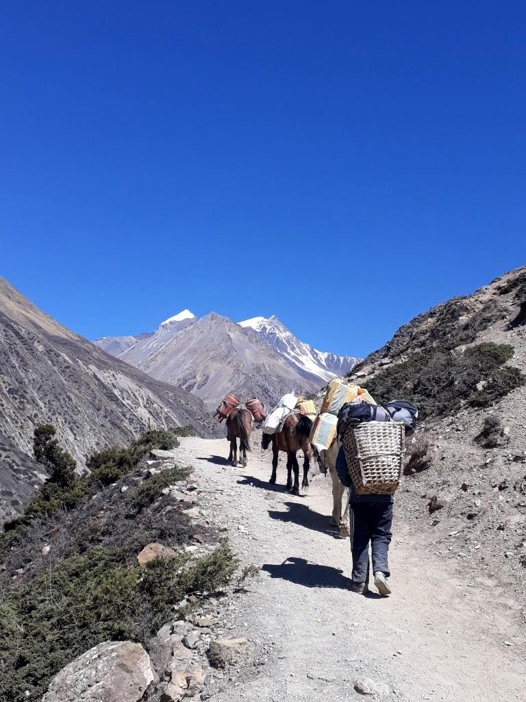 nepal anapurna circuit treking