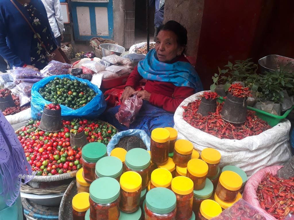 nepal kathmandu treking