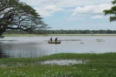 srilanka potovanje 54