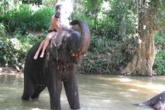 srilanka potovanje 9 (2)
